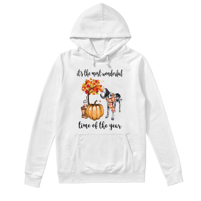Great Dane It's The Most Wonderful Time Of The Year Hoodie