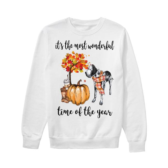 Great Dane It's The Most Wonderful Time Of The Year Sweater