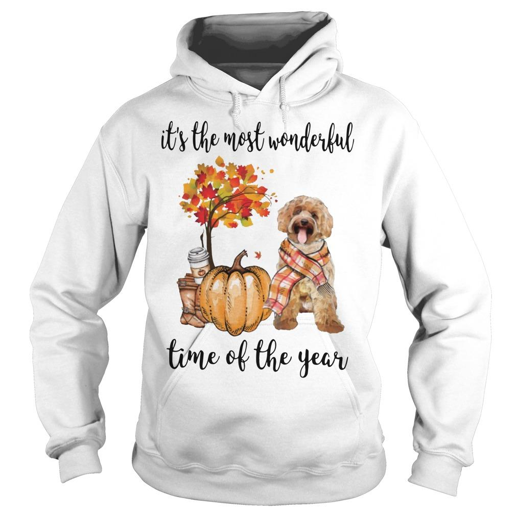 Labradoodle It's The Most Wonderful Time Of The Year Hoodie
