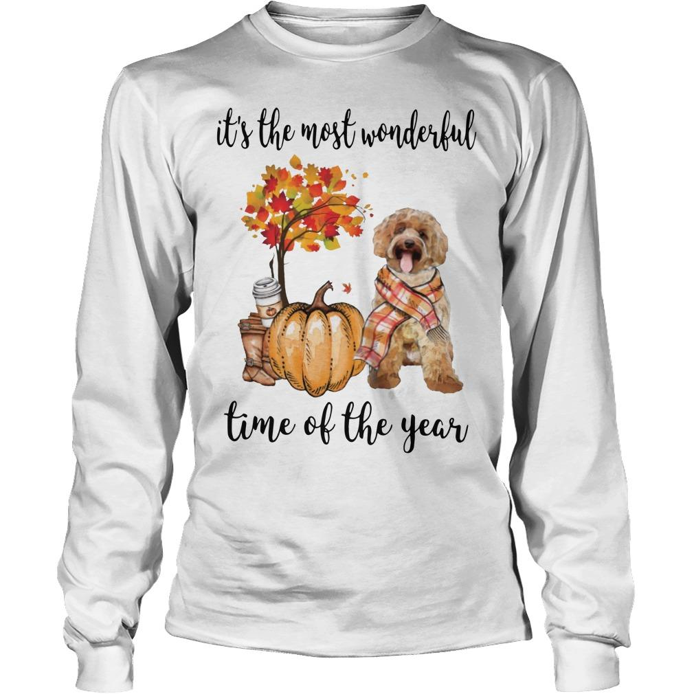 Labradoodle It's The Most Wonderful Time Of The Year Longsleeve