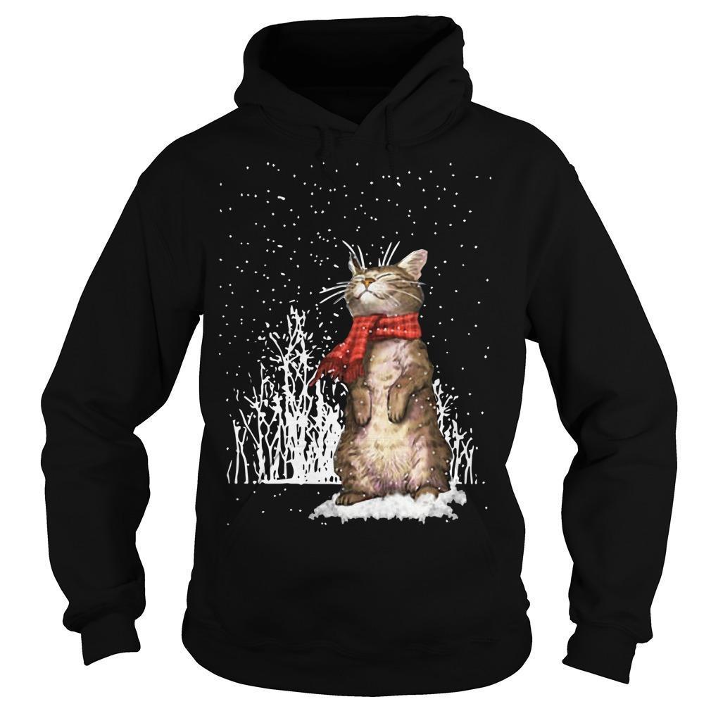 Cute Cat Under Snow Hoodie