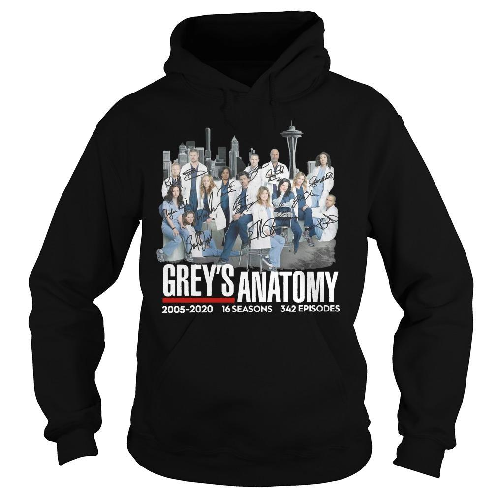 Grey's Anatomy 2005 2020 16 Seasons 342 Episodes Hoodie