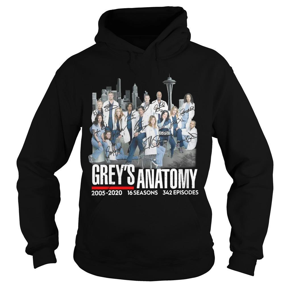 Grey's Anatomy 2005 2020 16 Seasons 342 Episodes Signatures Hoodie