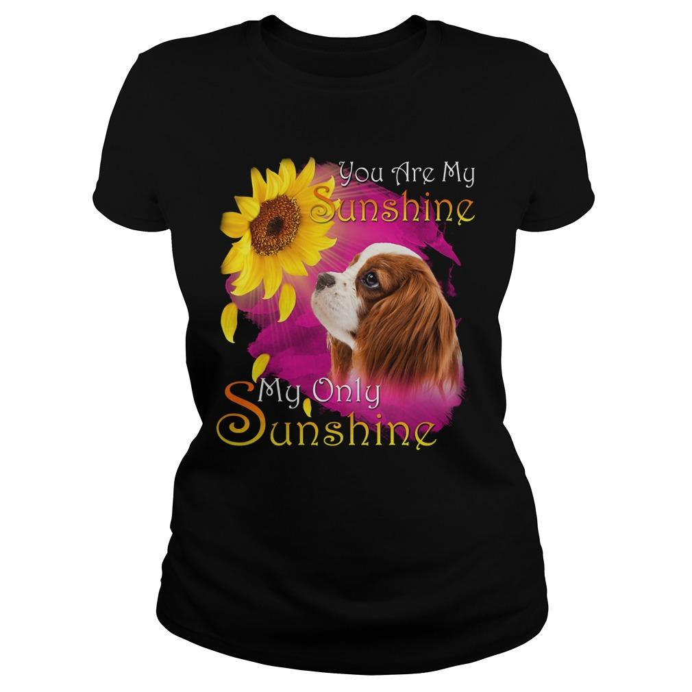 Cavalier King Charles Spaniel You Are My Sunshine My Only Sunshine Longsleeve