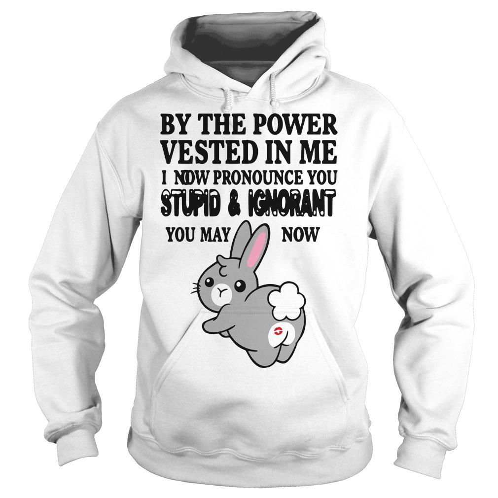 Bunny By The Power Vested In Me I Now Pronounce You Stupid And Ignorant Hoodie