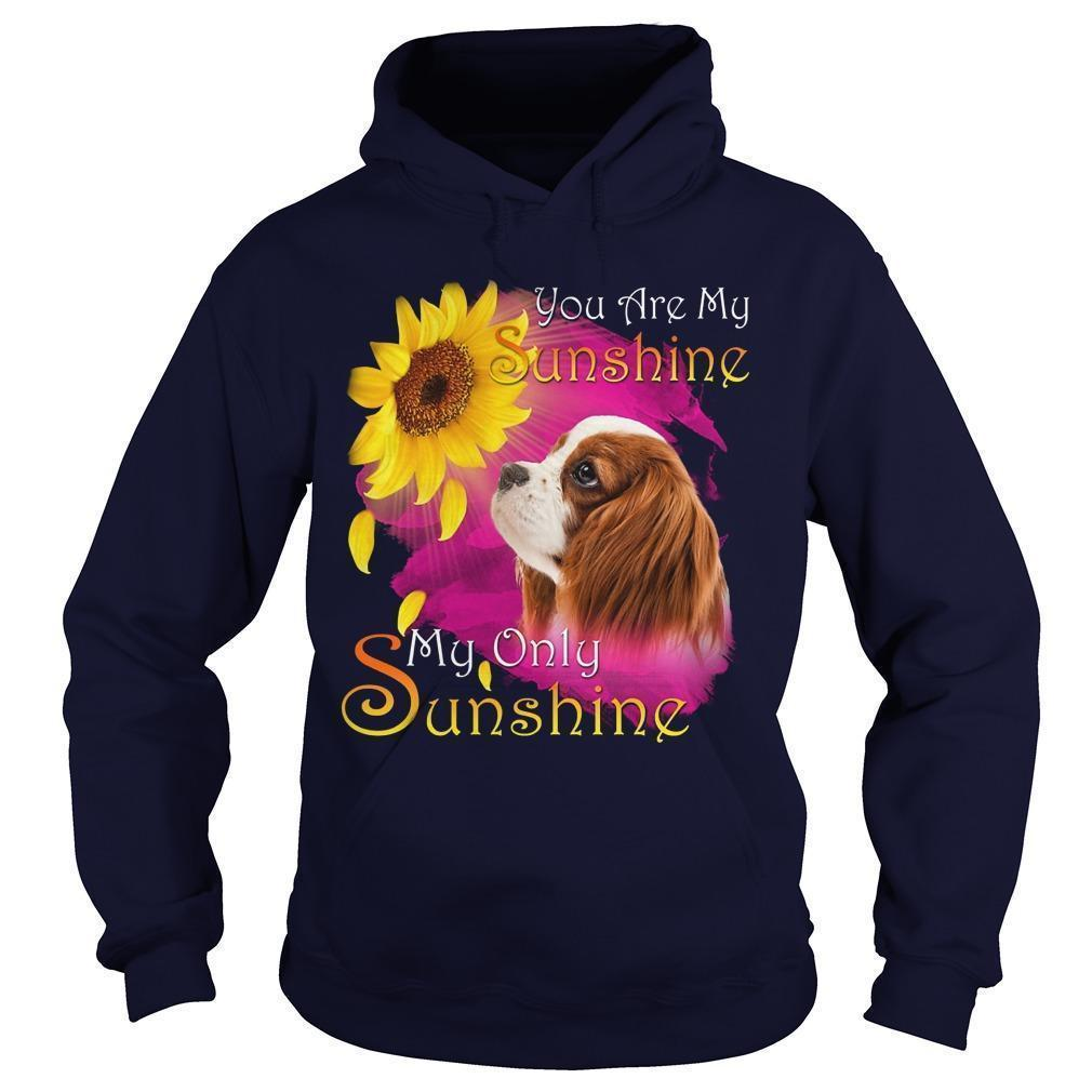 Cavalier King Charles Spaniel You Are My Sunshine My Only Sunshine Hoodie