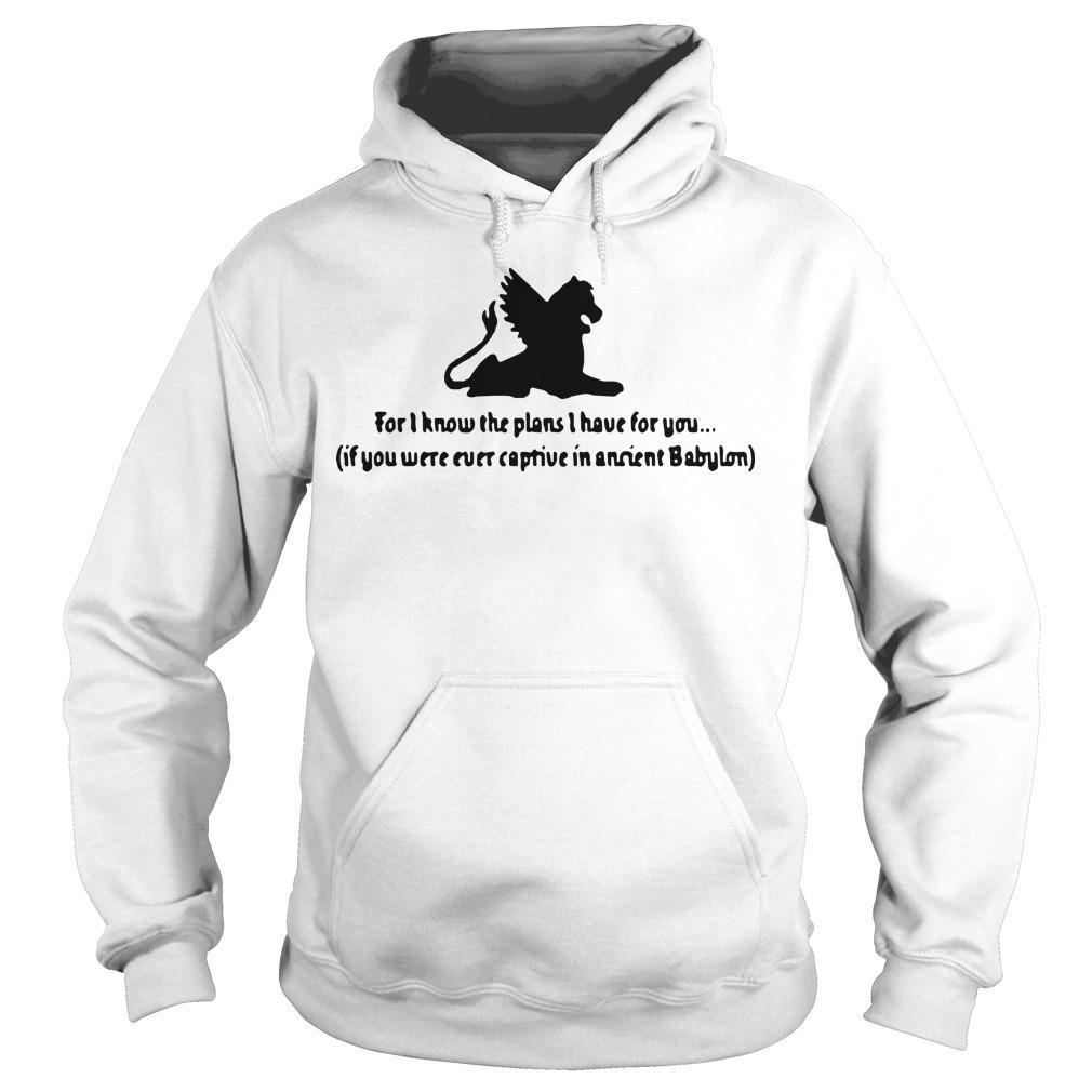 For I Know The Plans I Have For You If You Were Ever Captive In Ancient Babylon Hoodie
