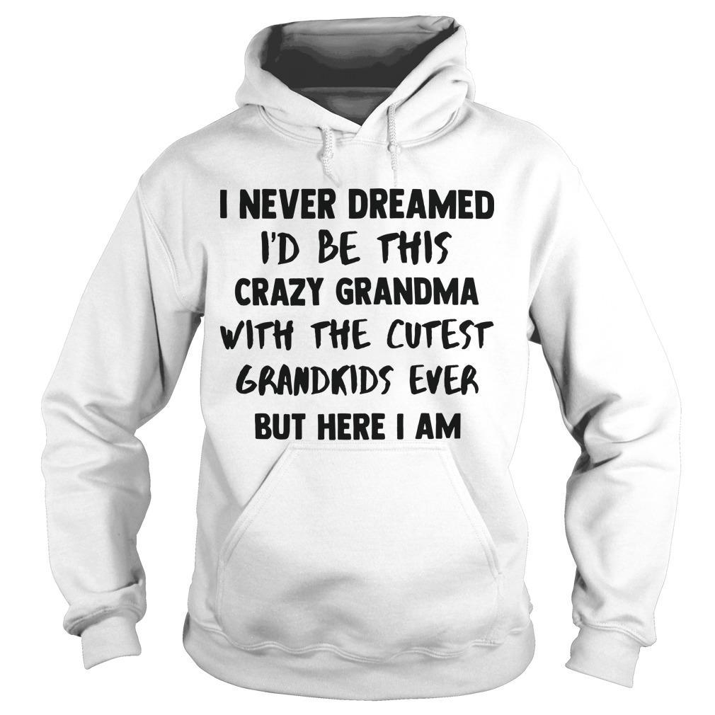 I Never Dreamed To Be This Crazy Grandma With The Cutest Grandkids Ever Hoodie