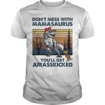 Vintage Autism Don't Mess With Mamasaurus You'll Get Jurasskicked Shirt