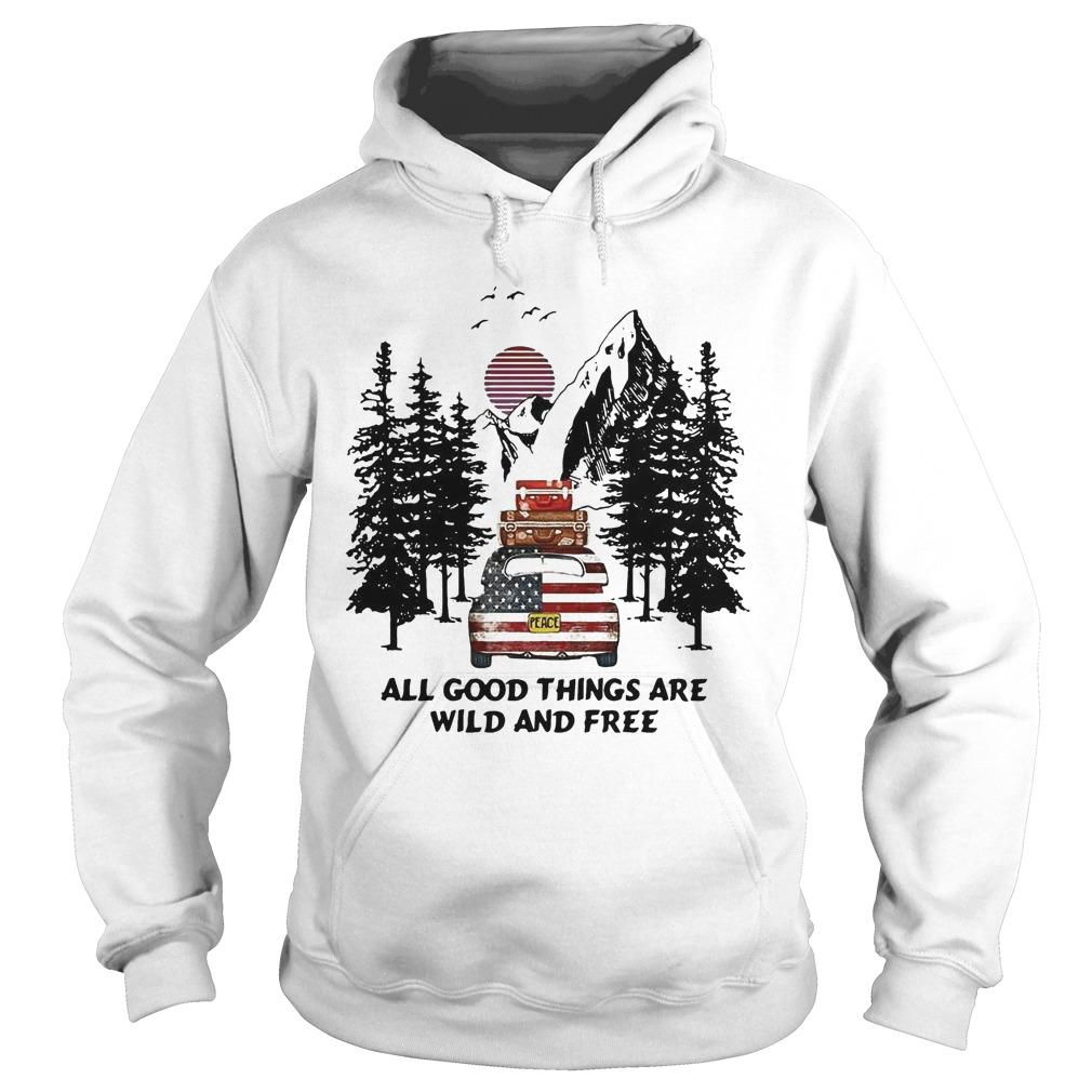 American Flag Car All Good Things Are Wild And Free Hoodie
