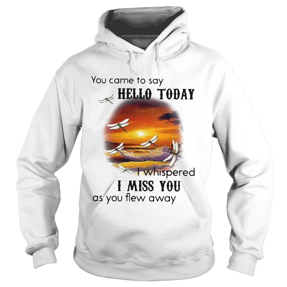 You Came To Say Hello Today I Whispered I Miss You As You Flew Away Hoodie