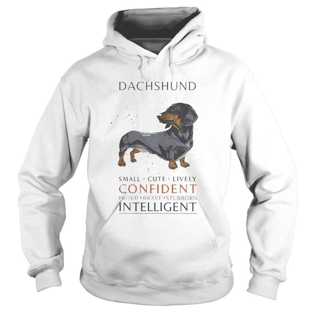 Dachshund Small Cute Lively Confident Proud Brave Stubborn Intelligent Hoodie