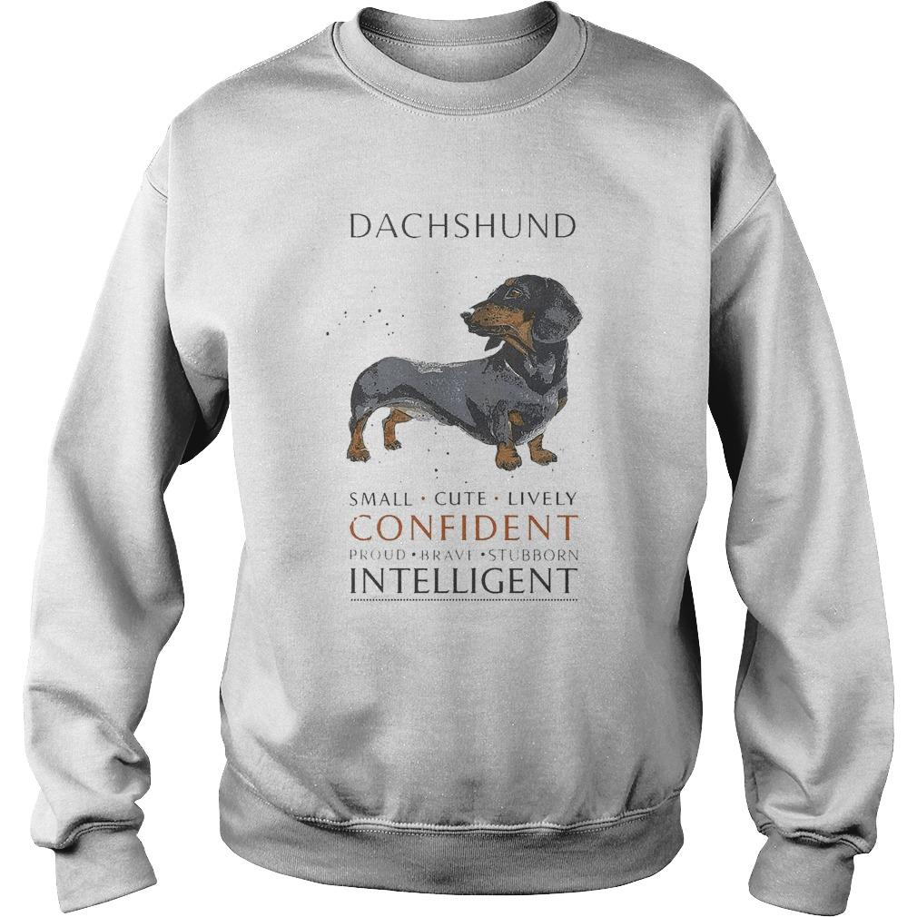 Dachshund Small Cute Lively Confident Proud Brave Stubborn Intelligent Sweater