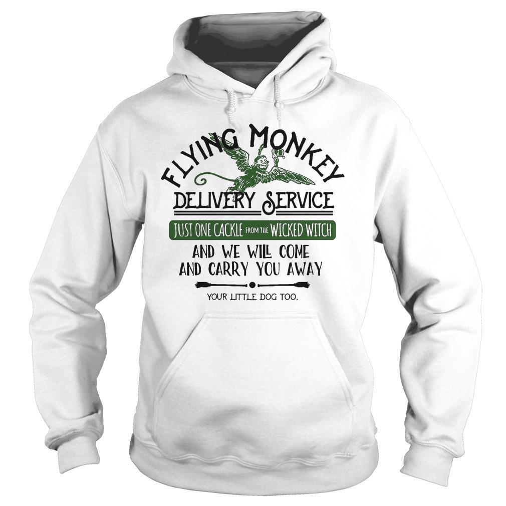 Flying Monkey Delivery Service And We Will Come And Carry You Away Hoodie