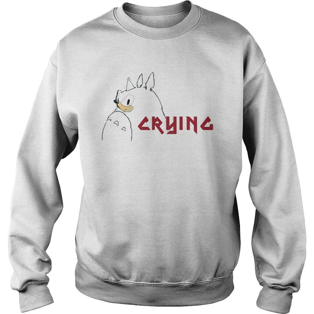 Totoro Sonic Crying Sweater
