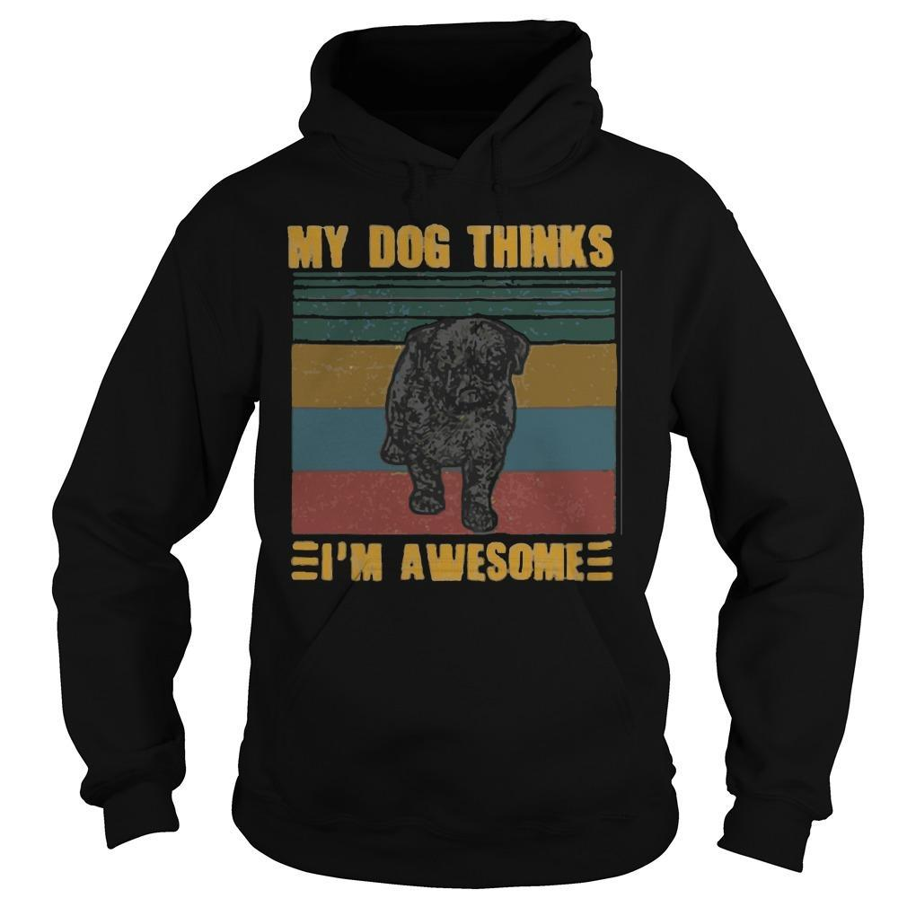 Vintage Pug My Dog Thinks I'm Awesome Hoodie