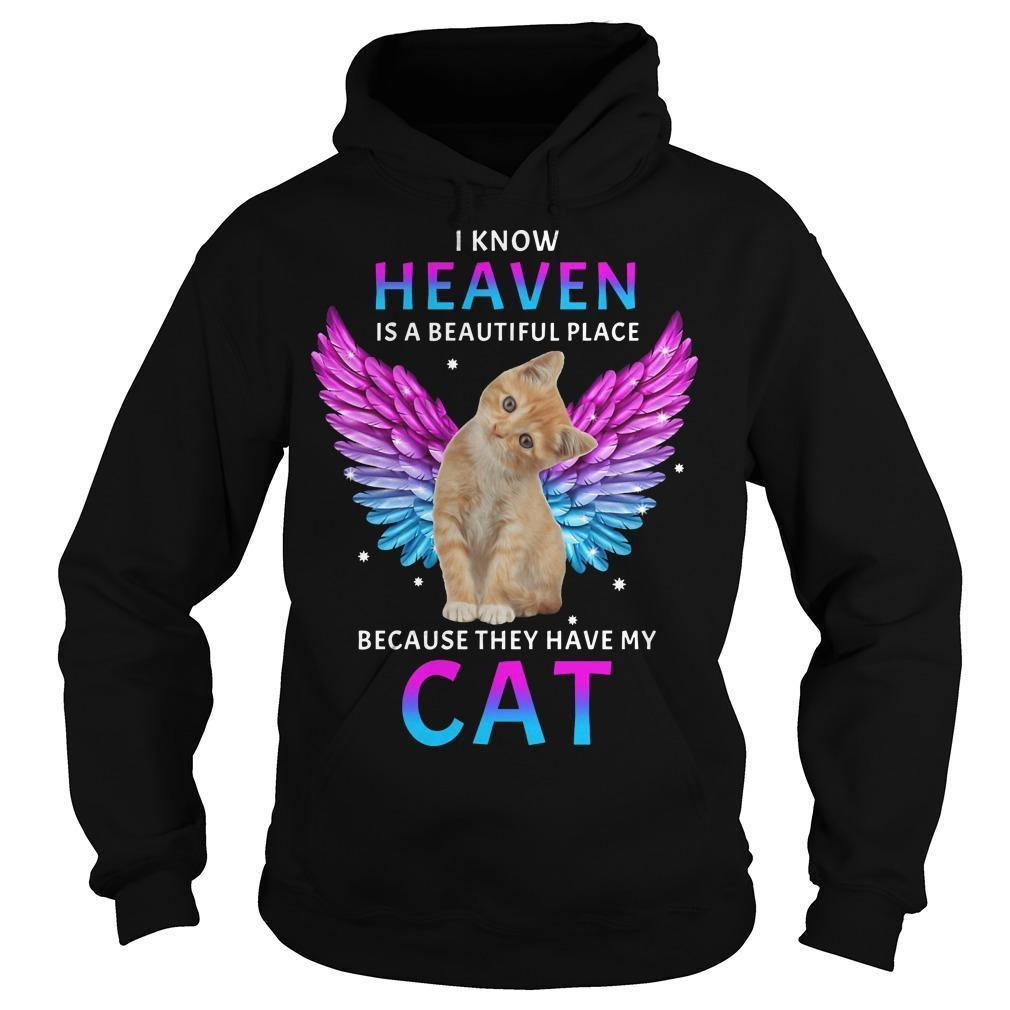 I Know Heaven Is A Beautiful Place Because They Have My Cat Hoodie