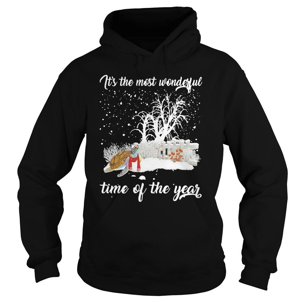 Turtle It's The Most Wonderful Time Of The Year Hoodie
