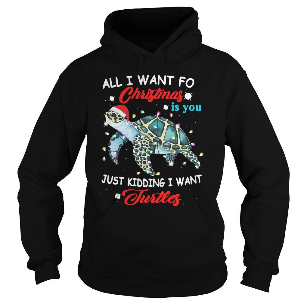 All I Want For Christmas Is You Just Kidding I Want Turtles Hoodie