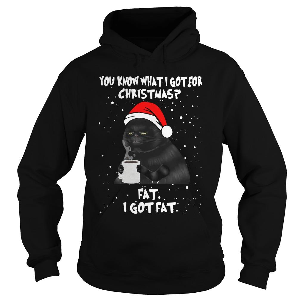 Black Cat You Know What I Got For Christmas Fat I Got Fat Hoodie