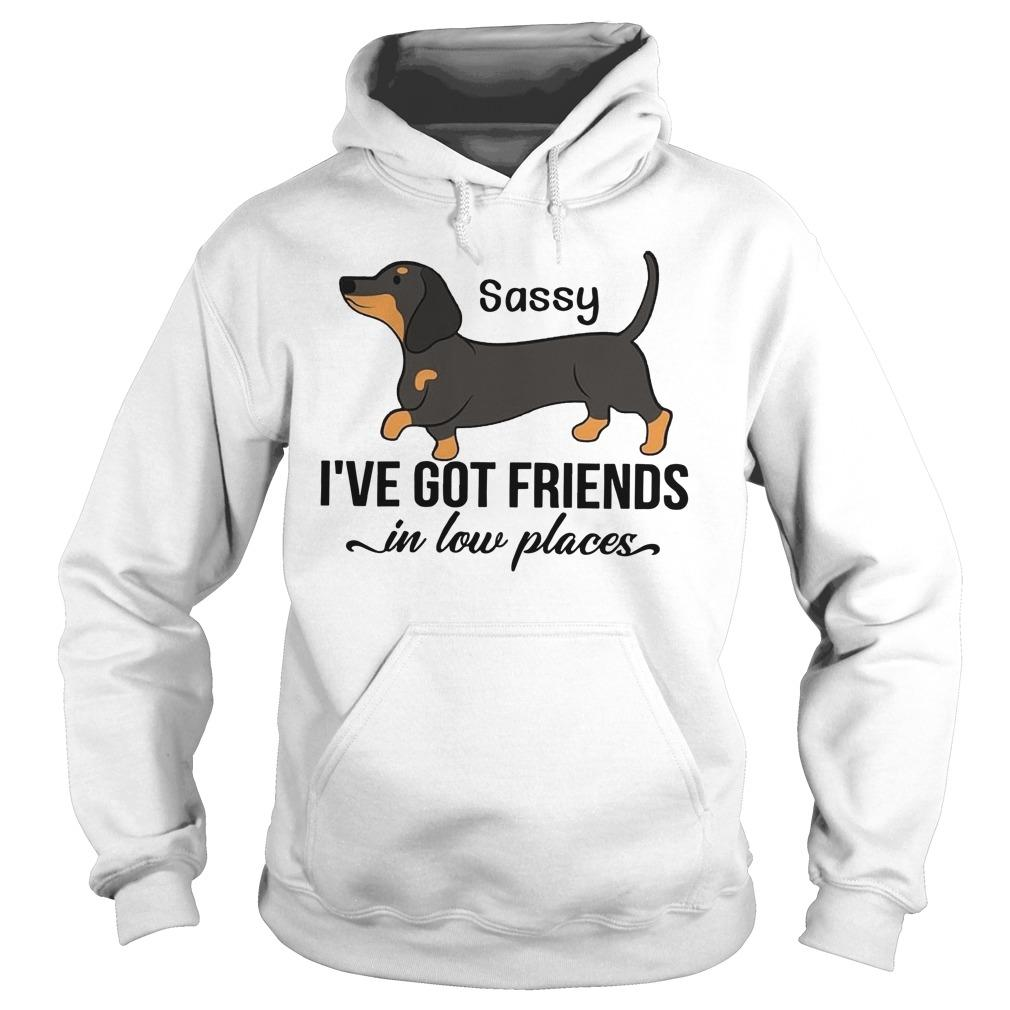 Dachshunds Sassy I've Got Friends In Low Places Hoodie