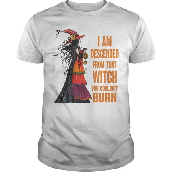 I Am Descended From That Witch You Couldn't Burn Shirt