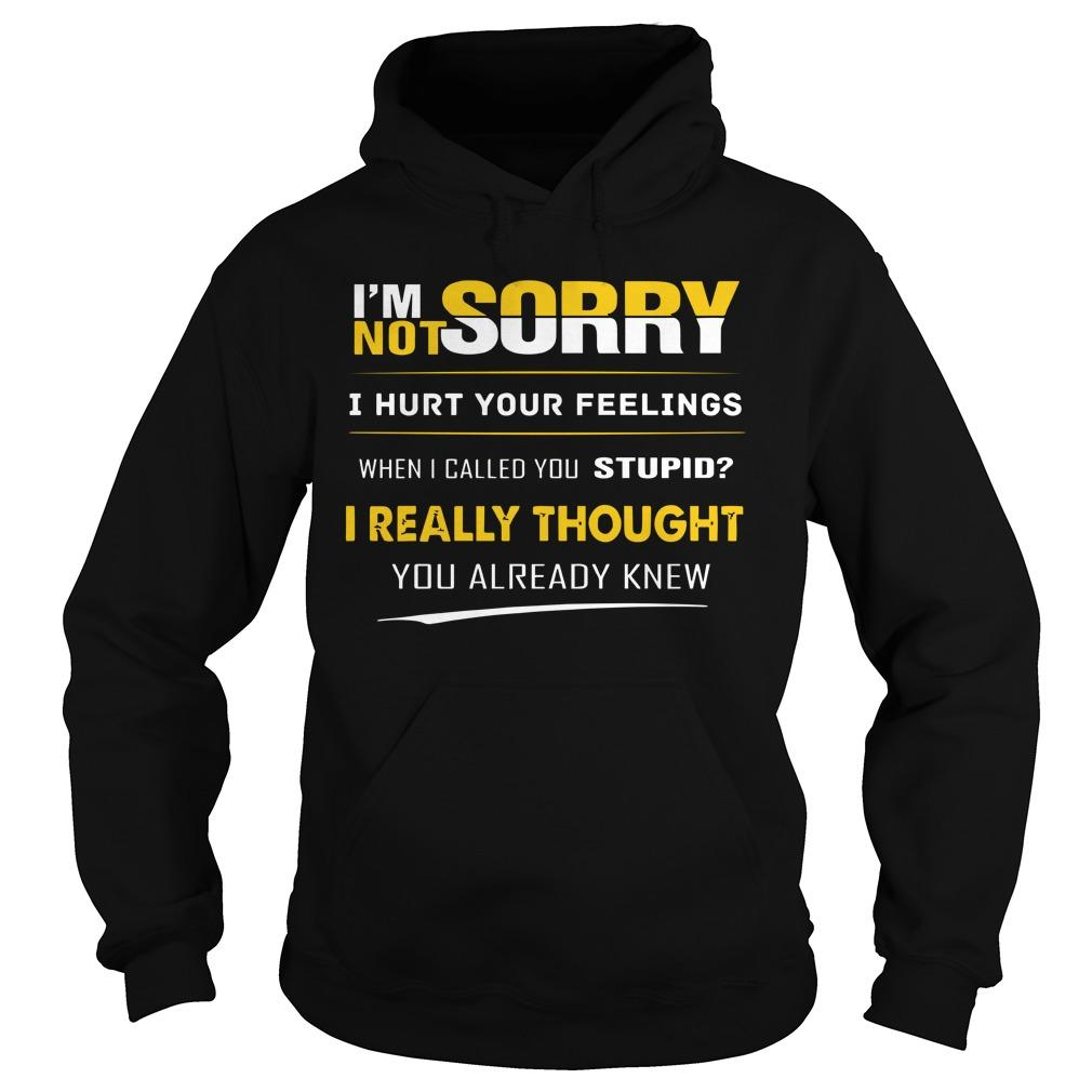 I'm Not Sorry I Hurt You Feelings When I Called You Stupid Hoodie