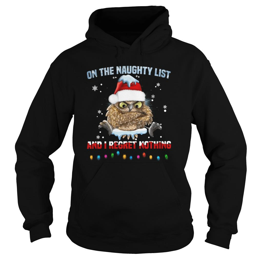 Owl On The Naughty List And I Regret Nothing Hoodie