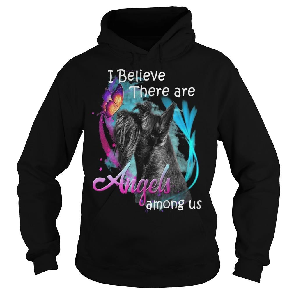 Schnauzer I Believe There Are Angels Among Us Hoodie
