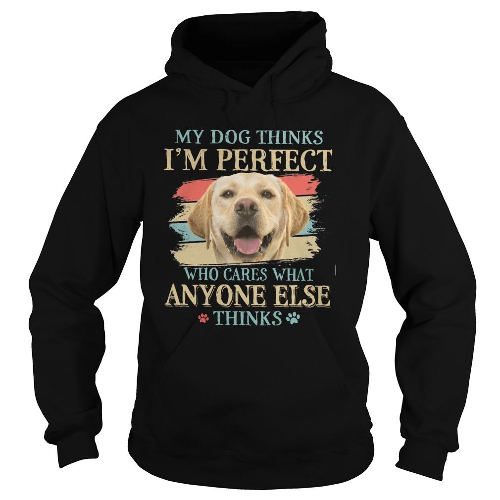 Vintage Golden My Dog Thinks I'm Perfect Who Cares What Anyone Else Thinks Hoodie