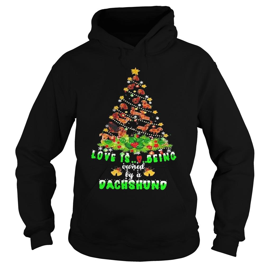 Christmas Tree Love Is Being Owned By A Dachshund Hoodie