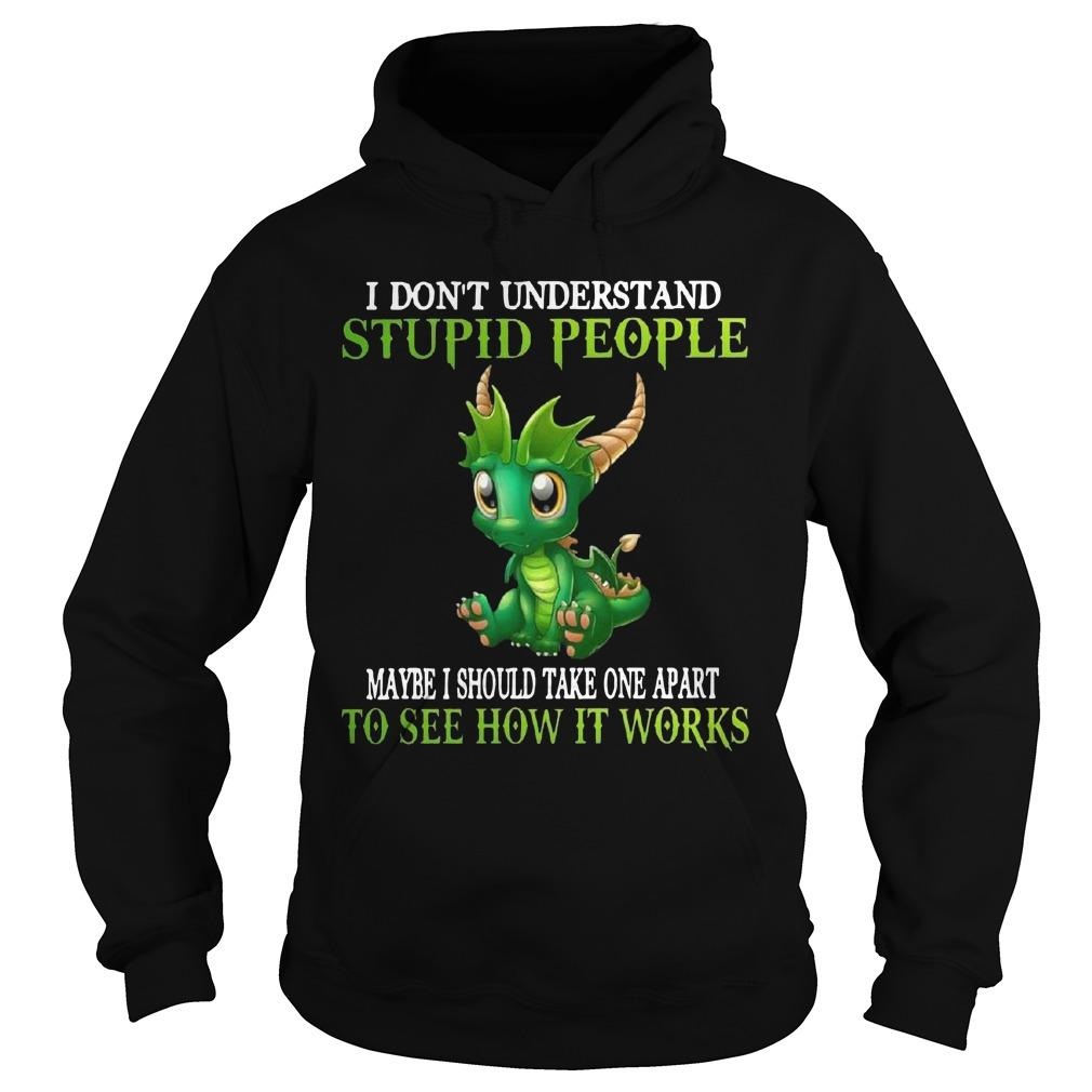 Dragon I Don't Understand Stupid People Maybe I Should Take One Apart Hoodie