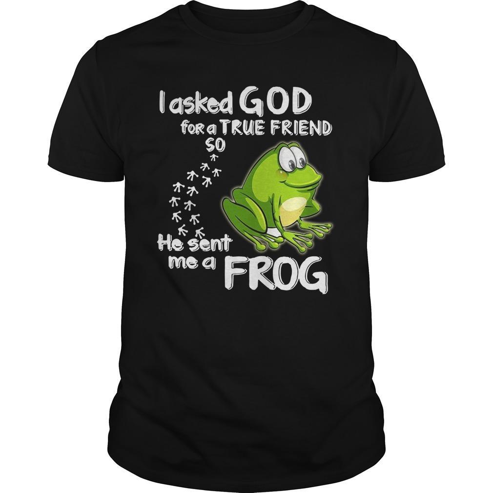 I Asked God For A True Friend So He Sent Me A Frog Longsleeve