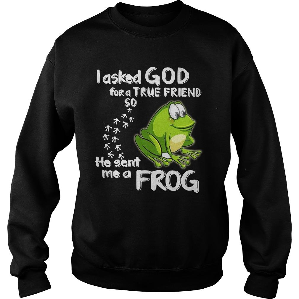 I Asked God For A True Friend So He Sent Me A Frog Sweater