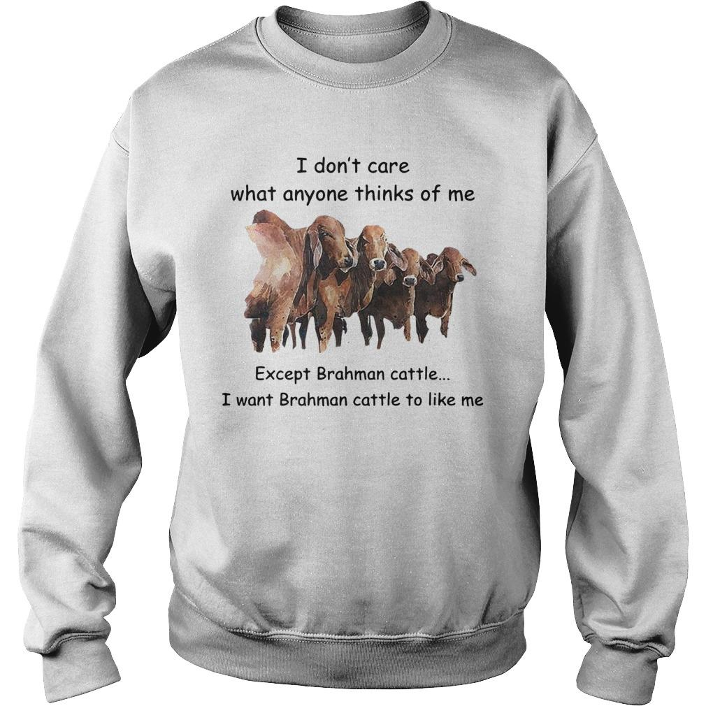 I Don't Care What Anyone Thinks Of Me Except Brahman Cattle Sweater