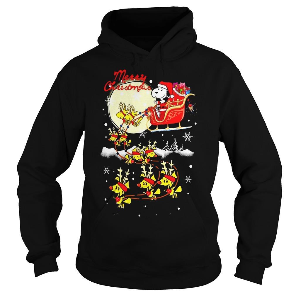 Santa Snoopy Merry Christmas Hoodie