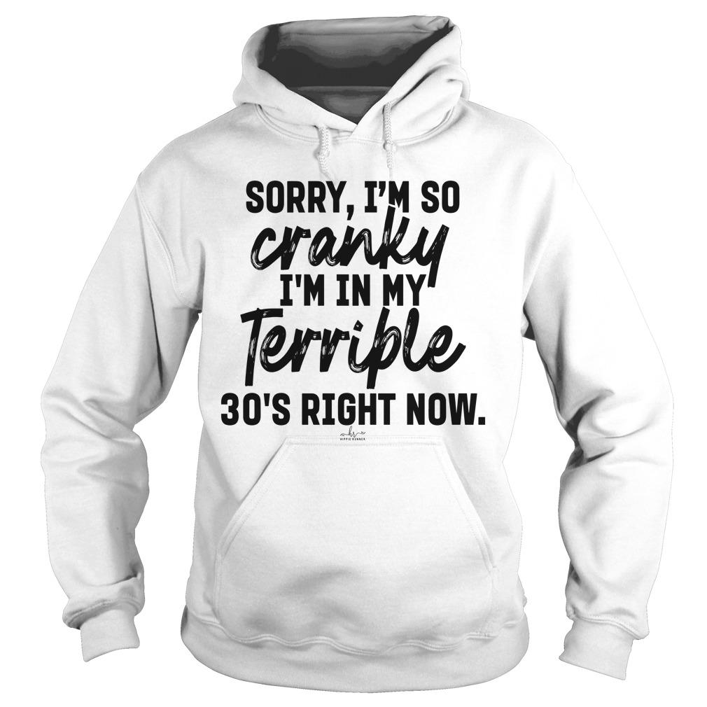 Sorry I'm So Cranky I'm In My Terrible 30's Right Now Hoodie