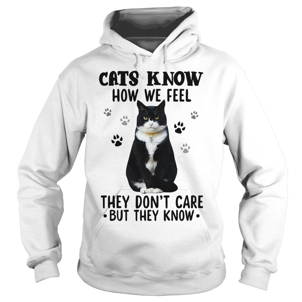 Black Cats Know How We Feel They Don't Care But They Know Hoodie