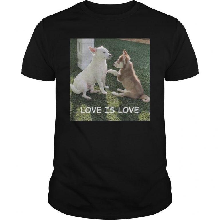 Bryson And Balto Love Is Love Shirt