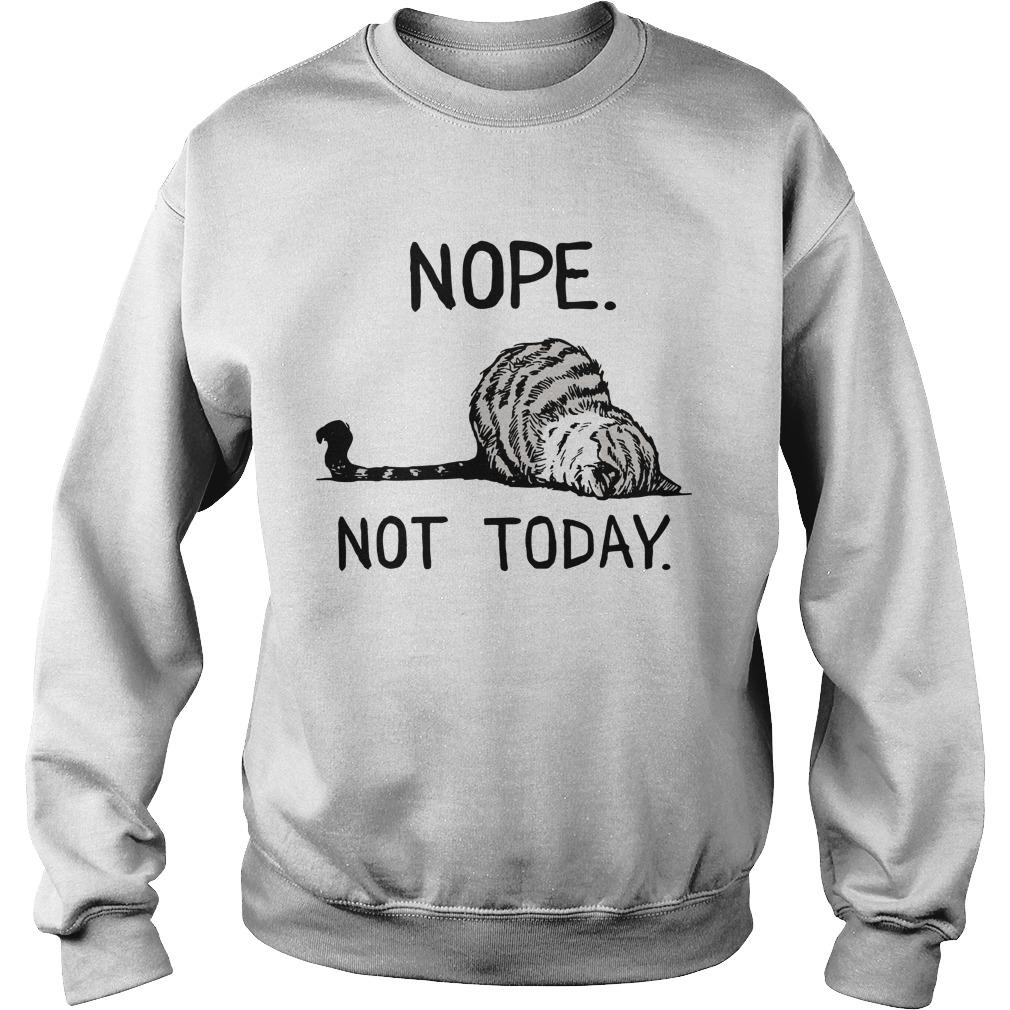 Cat Nope Not Today Sweater