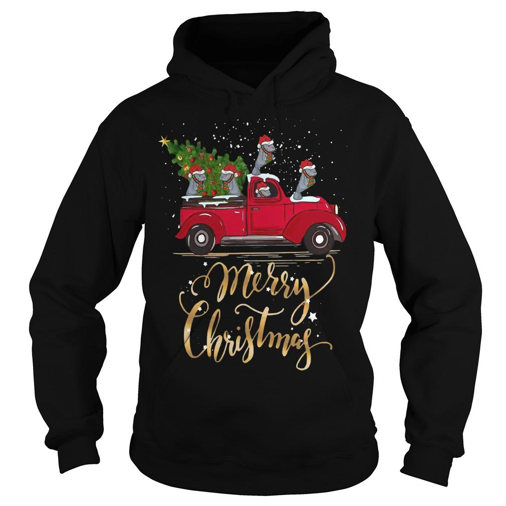 Hippopotamus With Red Truck Tree Merry Christmas Hoodie