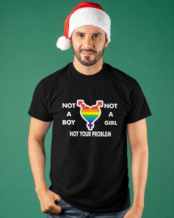 Lgbt Not A Boy Not A Girl Not Your Problem Shirt
