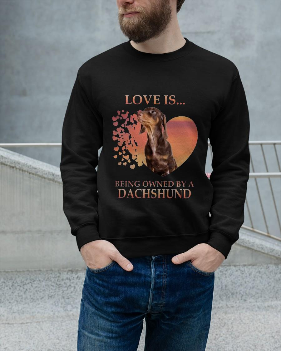 Love Is Being Owned By A Dachshund Sweater