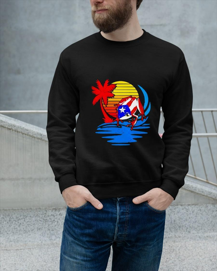 Frog Captain America Sunset Sweater