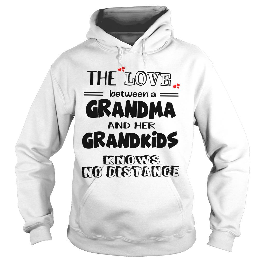 The Love Between A Grandma And Her Grandkids Knows No Distance Hoodie