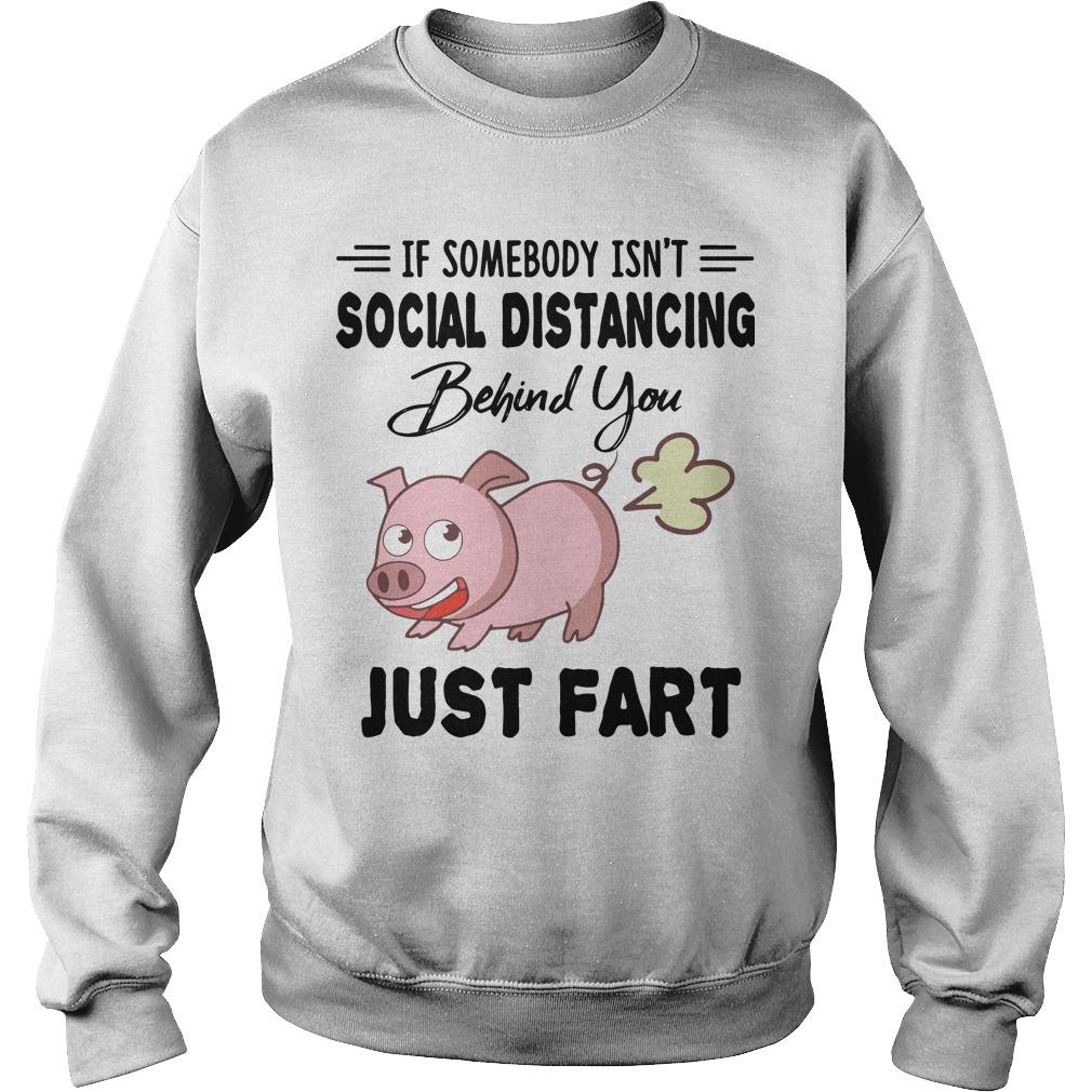 Pig If Somebody Isn't Social Distancing Behind You Just Fart Sweater