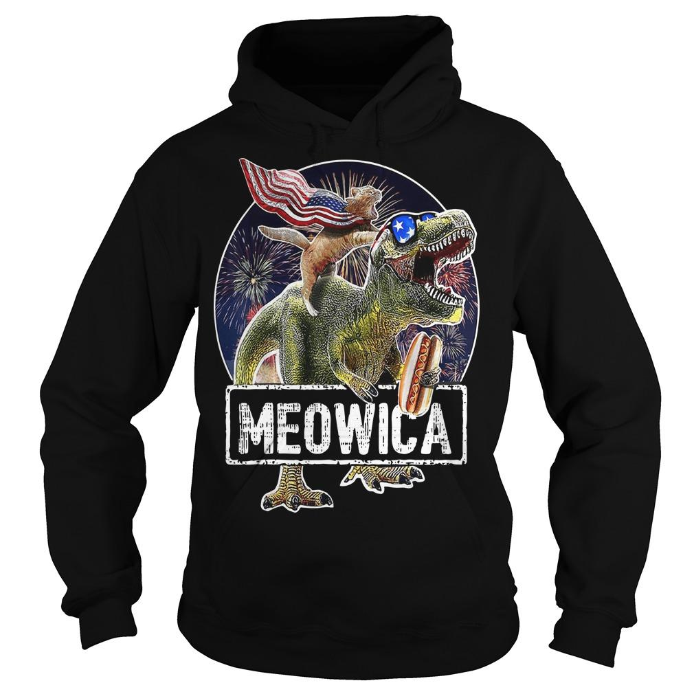 Cat T Rex Dinosaur 4th Of July Meowica Hoodie