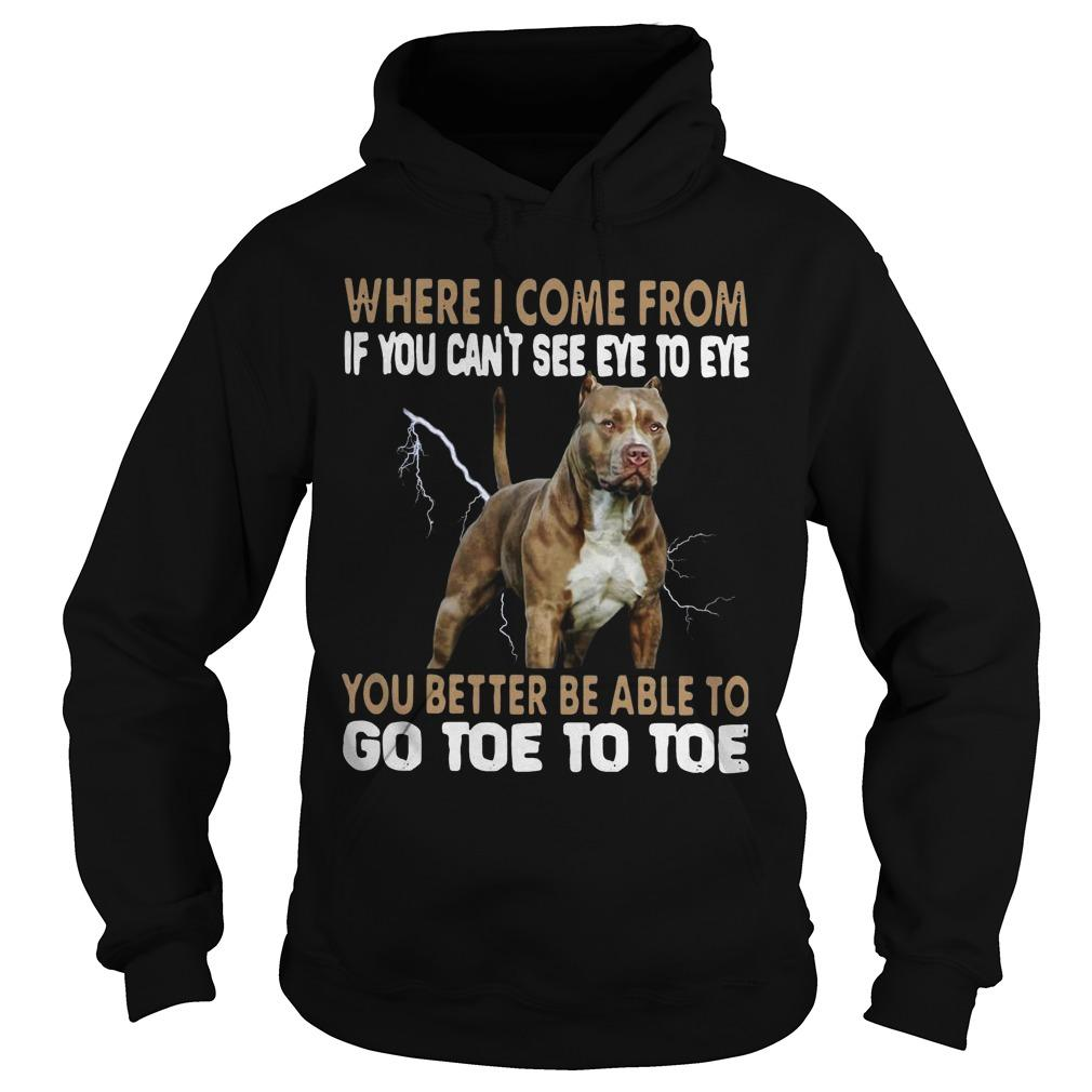 Pitbull Where I Come From If You Can't See Eye To Eye Go Toe To Toe Hoodie