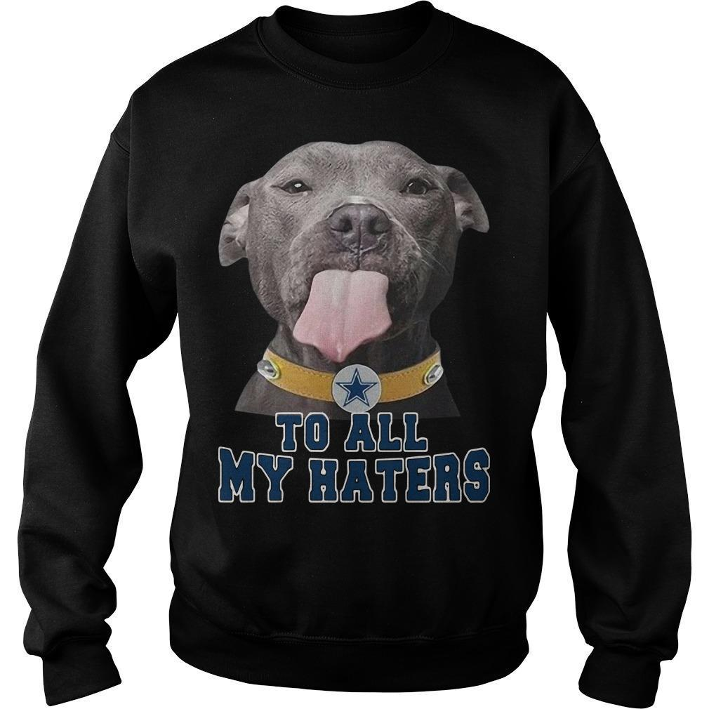 Pitbull To All My Haters Sweater