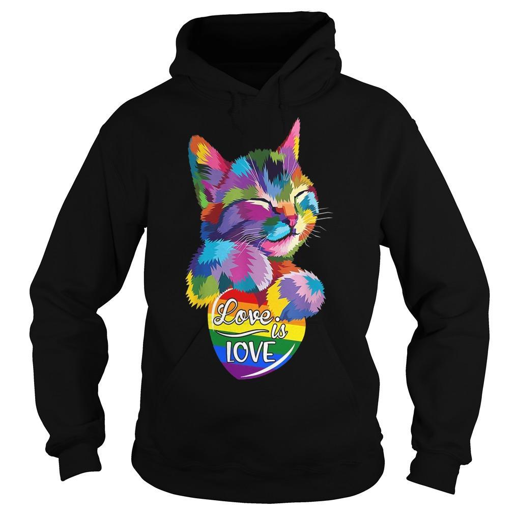 Lgbt Cat Love Is Love Hoodie